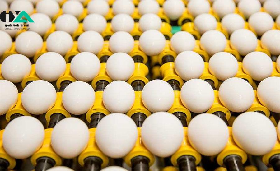 صادرات تخم مرغ به مدد یارانه متوقف نشد
